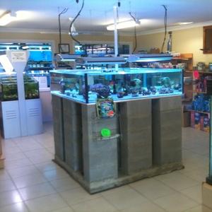 Aquarium Business